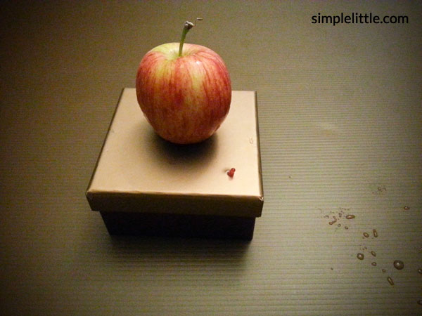 Protect your apple without chins - a fun experiment